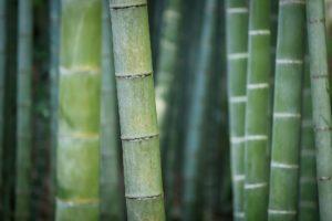 fabriquer flûte bambou