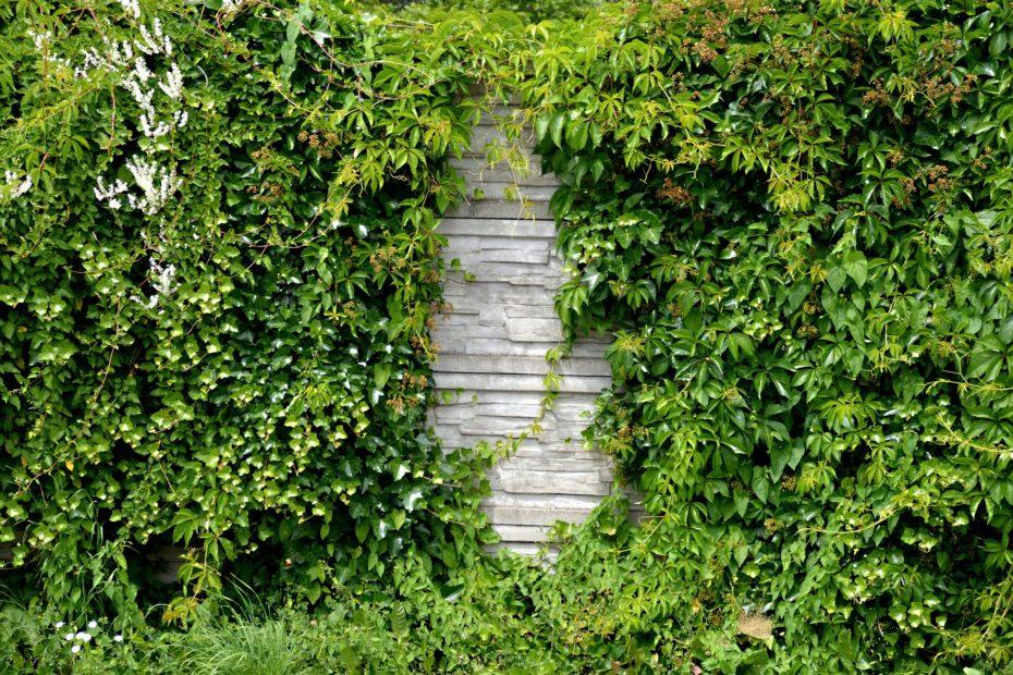 isolation phonique jardin