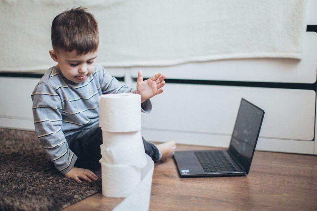 100 idées de bricolage avec du rouleau de papier toilette: un bricolage facile !