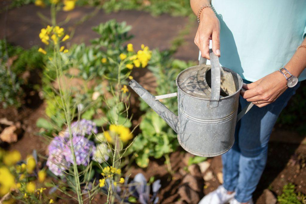 Comment recommencer une création de jardin DIY ?